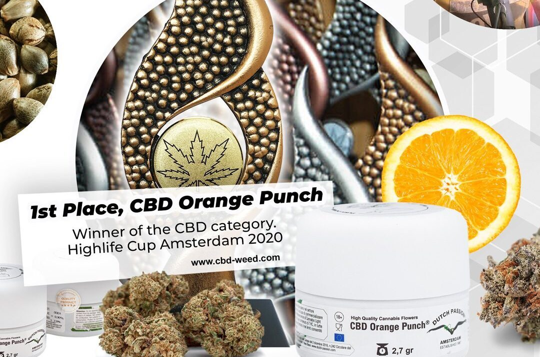 1st prize for CBD Orange Punch in CBD category